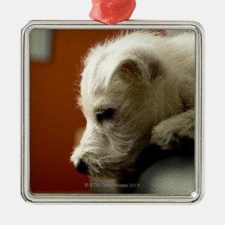 Perro en silla de la oficina ornamento de navidad