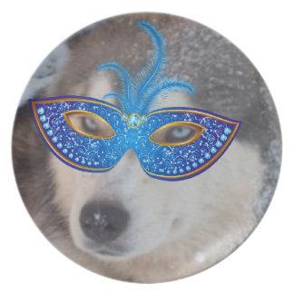 Perro esquimal de la placa en la máscara del carna plato