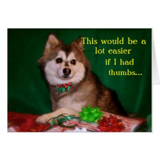 Perro esquimal que envuelve los regalos tarjeta de felicitación