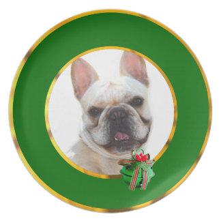 Perro feliz del dogo francés plato de comida
