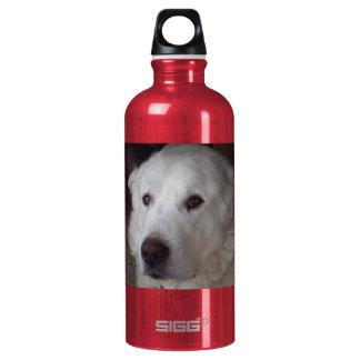 Perro hermoso de los grandes Pirineos Botella De Agua