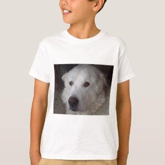 Perro hermoso de los grandes Pirineos Camiseta