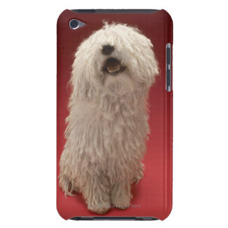 Perro lindo de Komondor iPod Case-Mate Protectores
