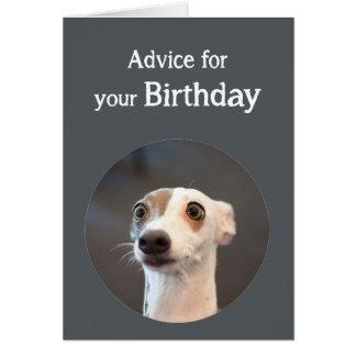 Perro lindo del humor del cumpleaños demasiado tarjeta de felicitación