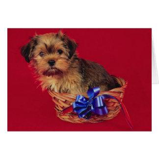 Perro lindo en tarjeta de cumpleaños de la cesta