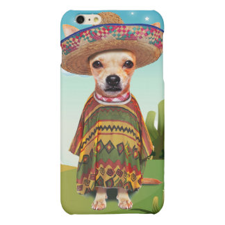 Perro mexicano, chihuahua