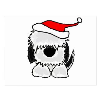 Perro pastor inglés viejo divertido en el gorra de postal