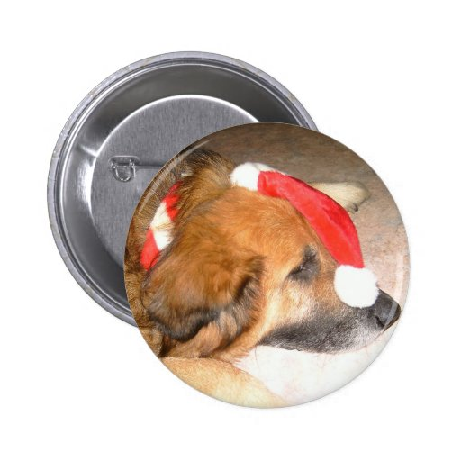 Perro pastor, perro, Divertido, la navidad, Christ Pin