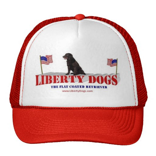 Perro perdiguero revestido plano gorras