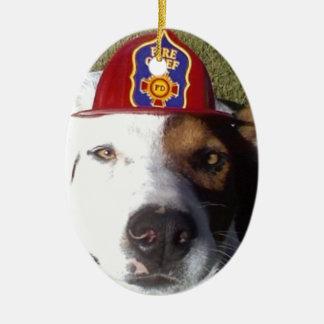 Perro, perros, divertidos, diversión, humor, adorno ovalado de cerámica