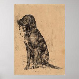 Perro solo que sostiene su propio correo, tinta de póster