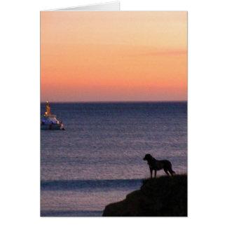 Perro y barco: Tiro afortunado Tarjeta De Felicitación