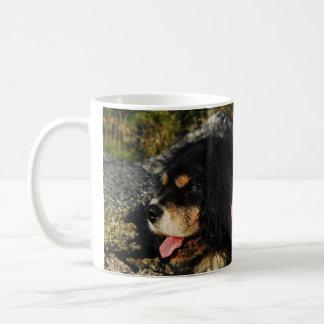 Perros de aguas de rey Charles arrogantes Taza De Café