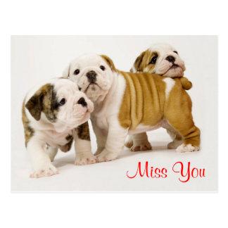 Perros de perrito de Srta. You Bulldog que saludan Postal