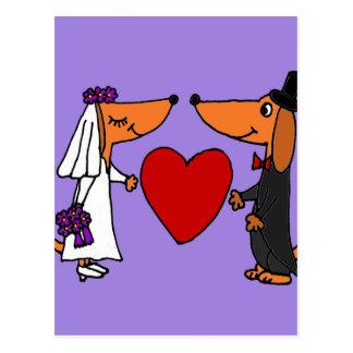Perros de perrito divertidos del Dachshund novia y Postal