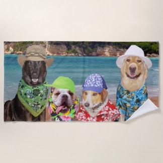 Perros divertidos en la toalla de playa de la