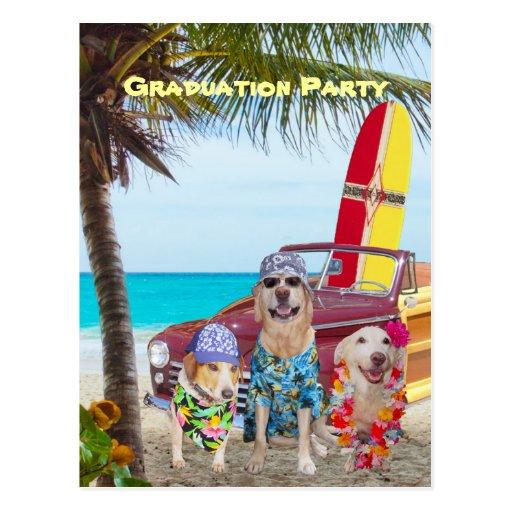 Perros/fiesta divertidos adaptables de la playa de tarjetas postales