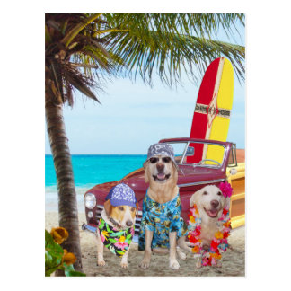 Perros/laboratorios divertidos adaptables en la pl postal