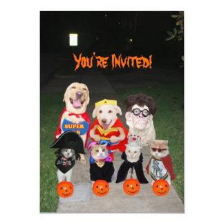 Perros y gatos divertidos Halloween Invitación 12,7 X 17,8 Cm