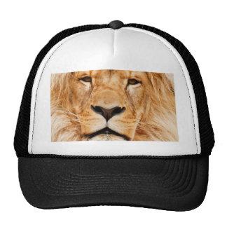 personalice y modifique la imagen del león para re gorra