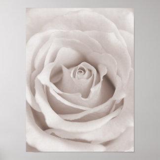 Personalizado color de rosa blanco y poner crema póster