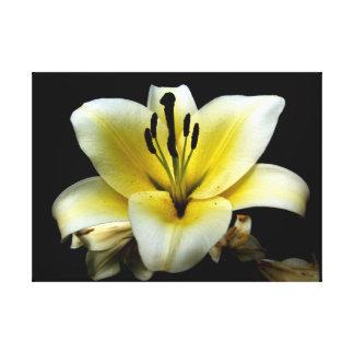 Personalizado floral 24 x lona 18 lona estirada galerias