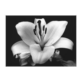 Personalizado floral 24 x lona 18 lienzo envuelto para galerías