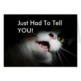 Personalizado grosero y refranes del gato tarjeta de felicitación