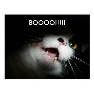 Personalizado grosero y refranes del gato tarjeta postal