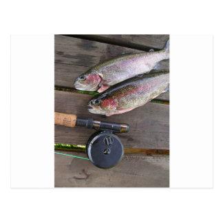 Pesca con mosca de la trucha postal