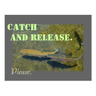 Pesca de la trucha arco iris de las postales de la