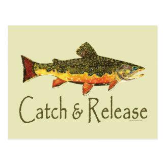 Pesca de la trucha de la captura y del lanzamiento postal