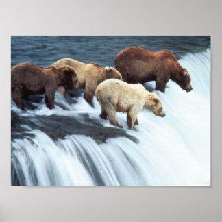 Pesca de los osos 2 poster