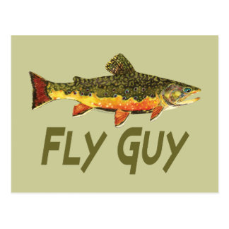 Pescador de la mosca tarjeta postal
