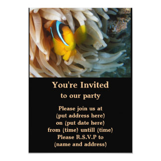 Pescados anaranjados del payaso invitación 12,7 x 17,8 cm