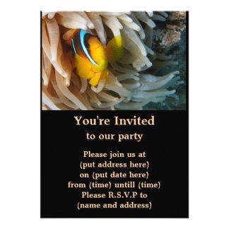 Pescados anaranjados del payaso invitacion personal