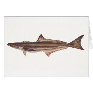 Pescados - carita negro - pondicerianum del tarjeta de felicitación
