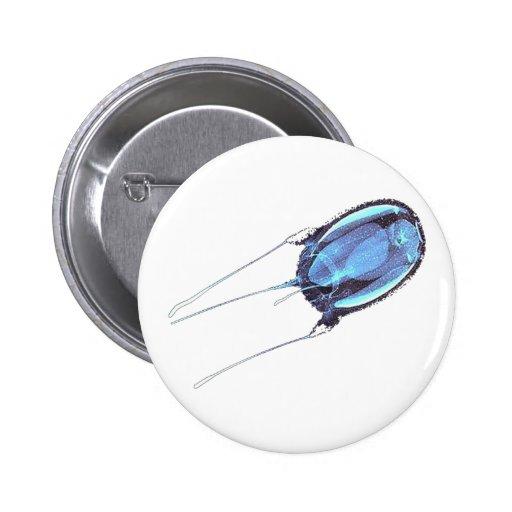 Pescados de jalea peligrosos de la caja de Austrai Pin
