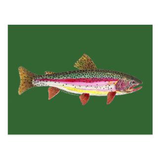 Pescados de la trucha arco iris postal