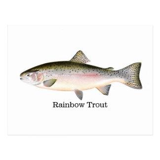 Pescados de la trucha arco iris postales