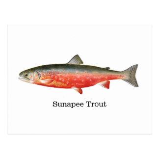 Pescados de la trucha de Sunapee Postal