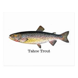 Pescados de la trucha de Tahoe Postal