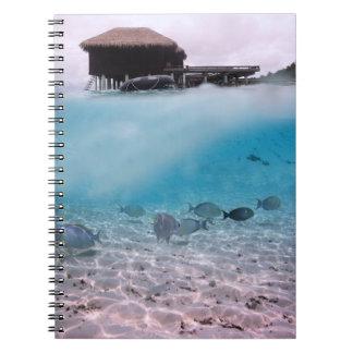 Pescados del coral de la playa de las aventuras de cuaderno