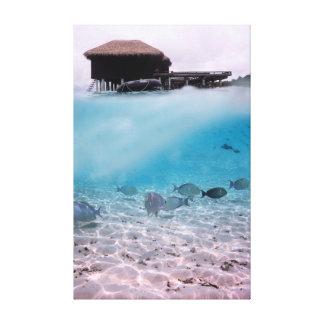 Pescados del coral de las aventuras de Maldivas de Lienzo