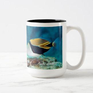 Pescados del estado de Hawaii, Taza Bicolor