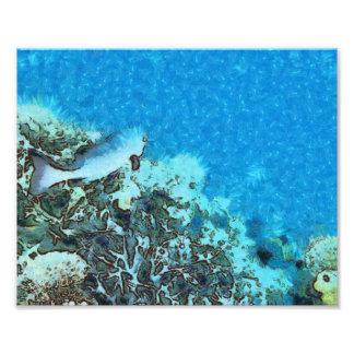 Pescados que se mueven sobre el filón foto