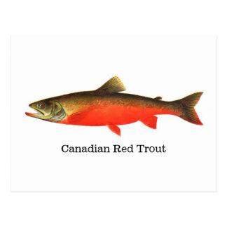 Pescados rojos canadienses de la trucha postal