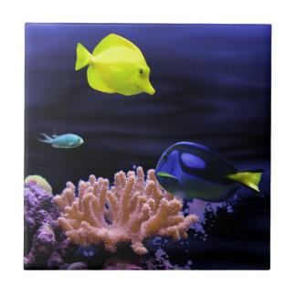 Pescados tropicales coloridos azulejo cuadrado pequeño