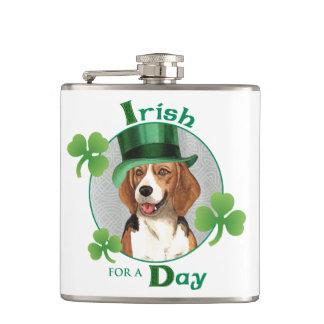 Petaca Beagle del día de St Patrick