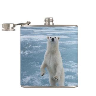 Petaca Oso polar